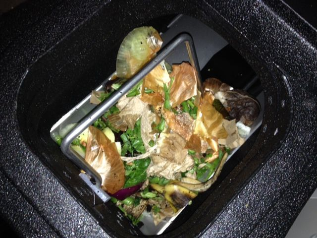 Nature Mill food waste photo