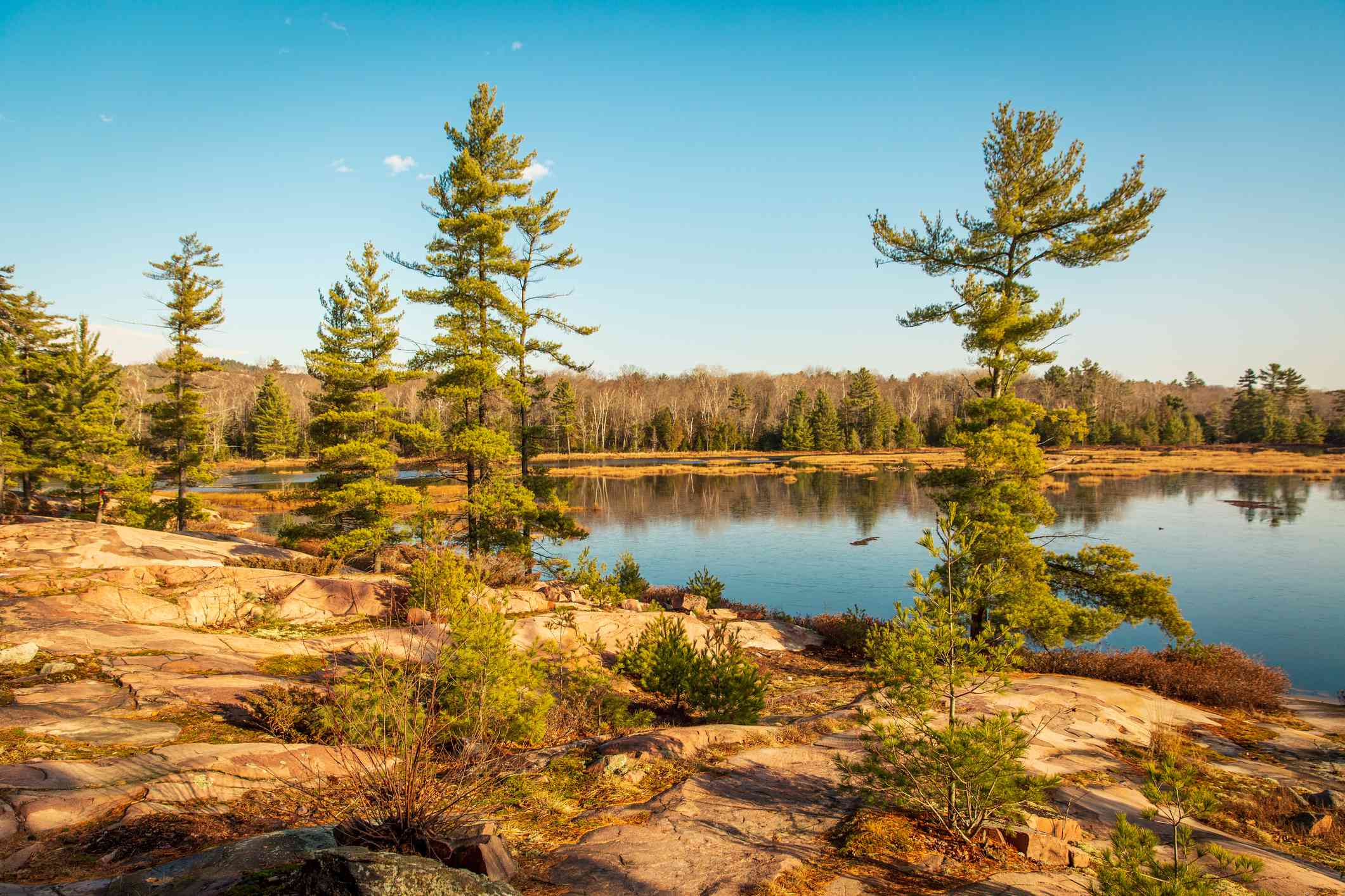 View of a pristine lake surrounded by green trees against a blue sky on a sunny day at Killarney Provincial Park