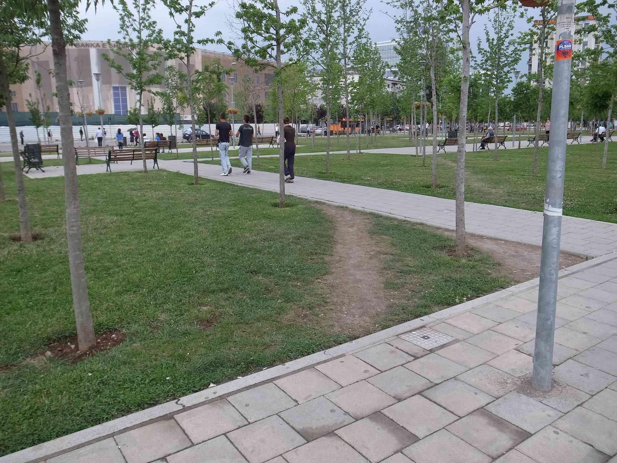 a short desire path