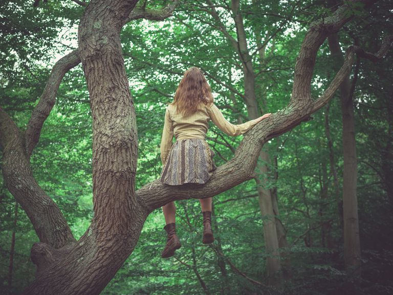 You're Never Too Old to Climb a Tree