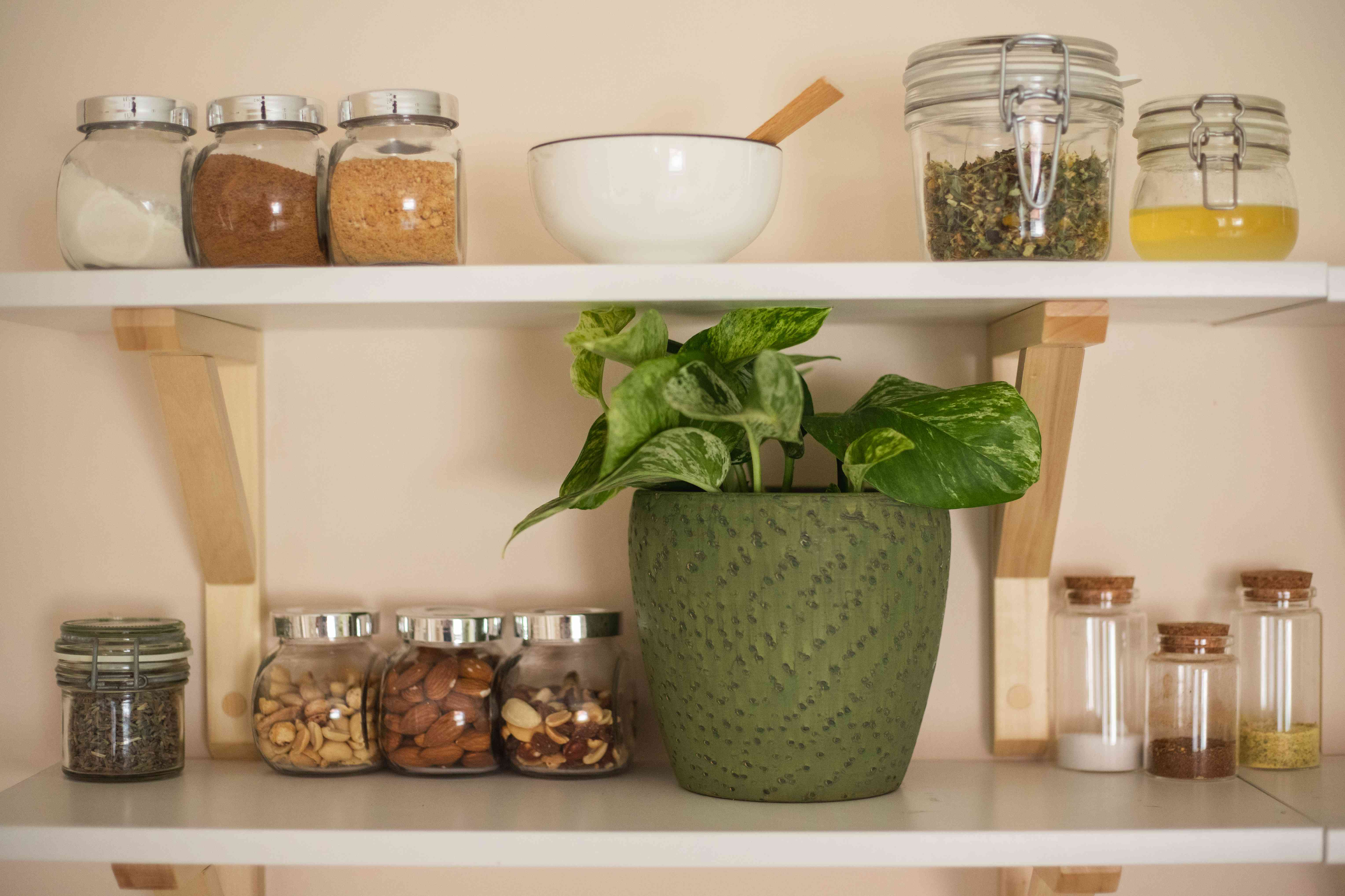 floating shelves filled with dry goods in glass jars and a green potted houseplant