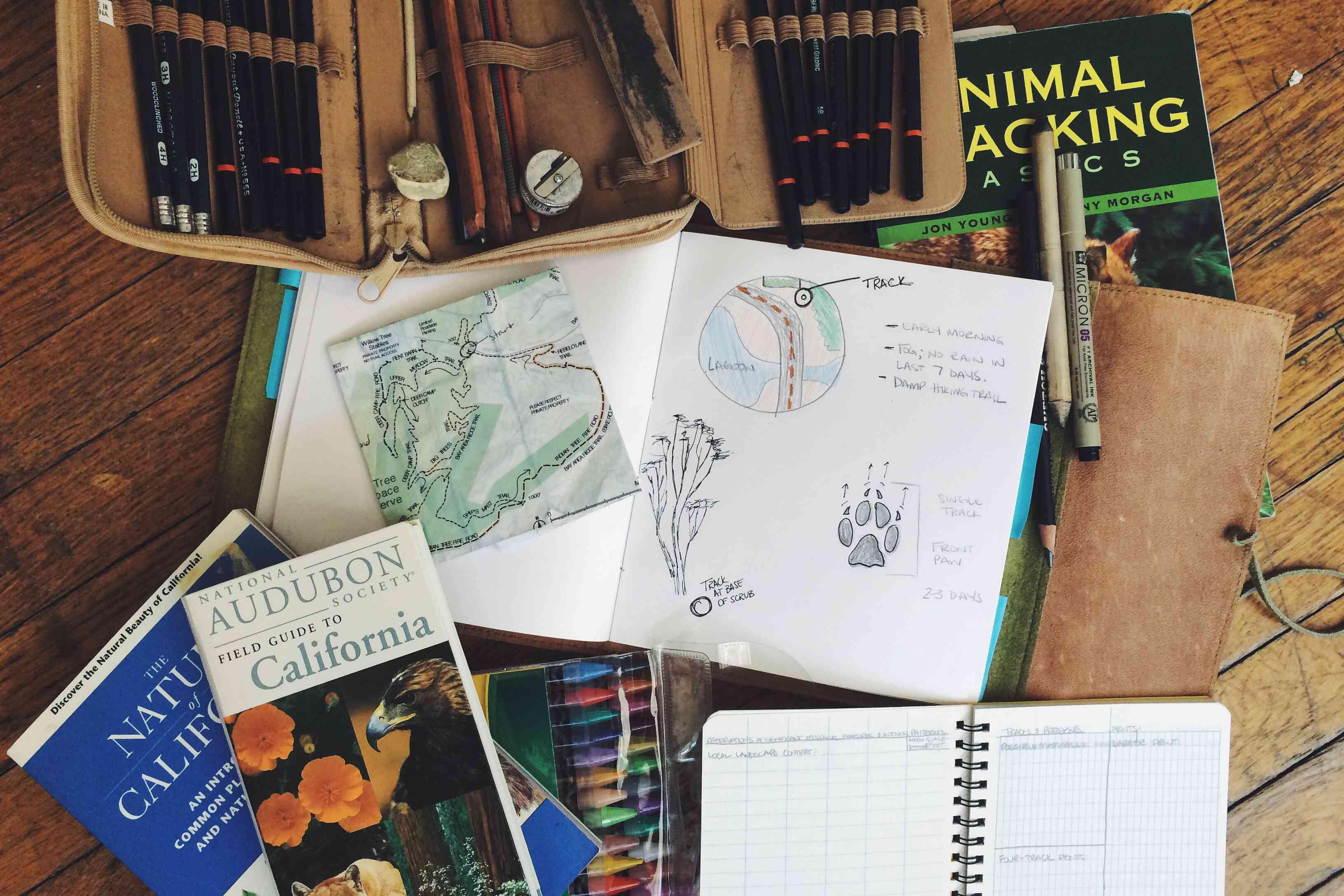 A nature journal can take whatever form you want, but ultimately it will connect you to the wild right outside your door.