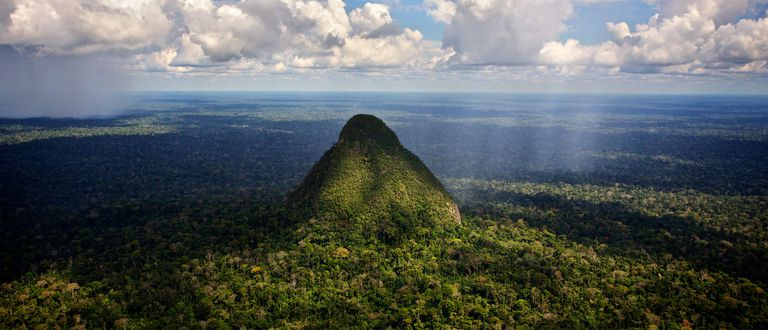 Perú protege vasto 'Yellowstone del Amazonas'