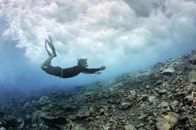 wave on coral reef