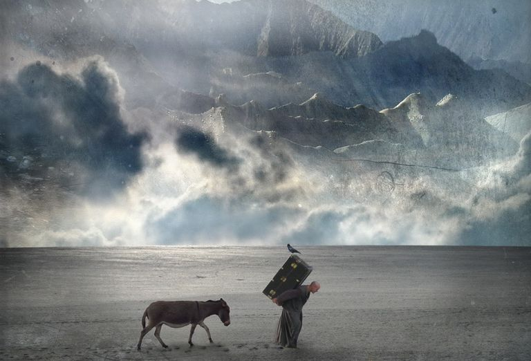 A man and his mule walking through desolate land