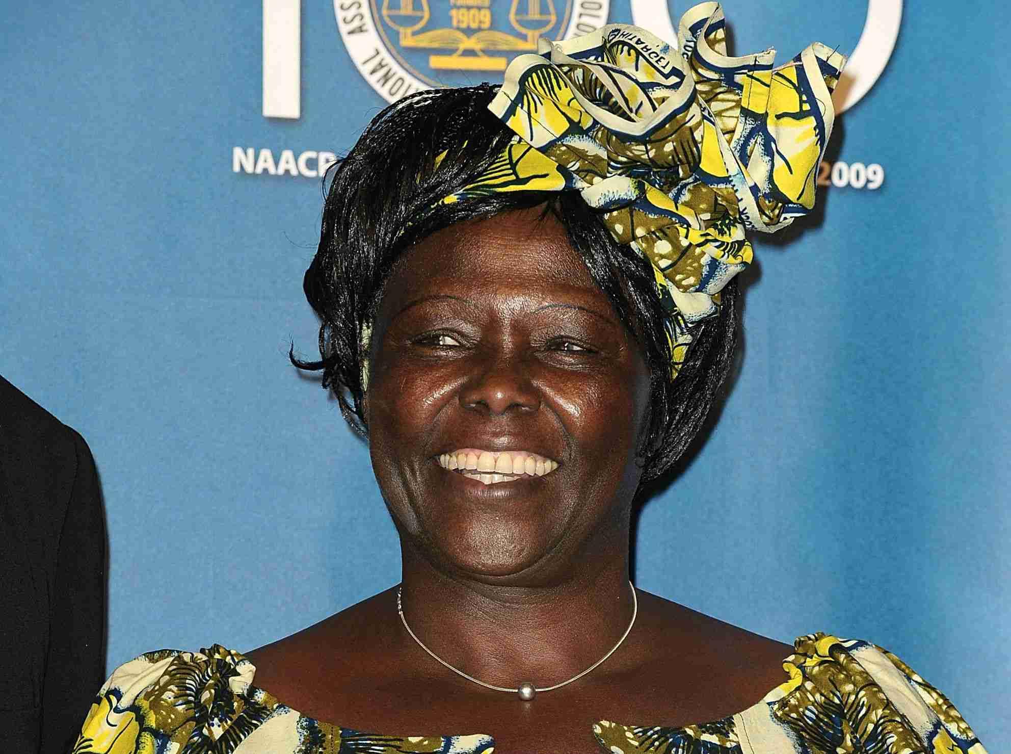 Wangari Maathai speaking
