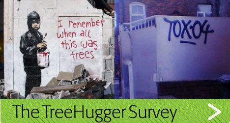 grafitti-survey.jpg