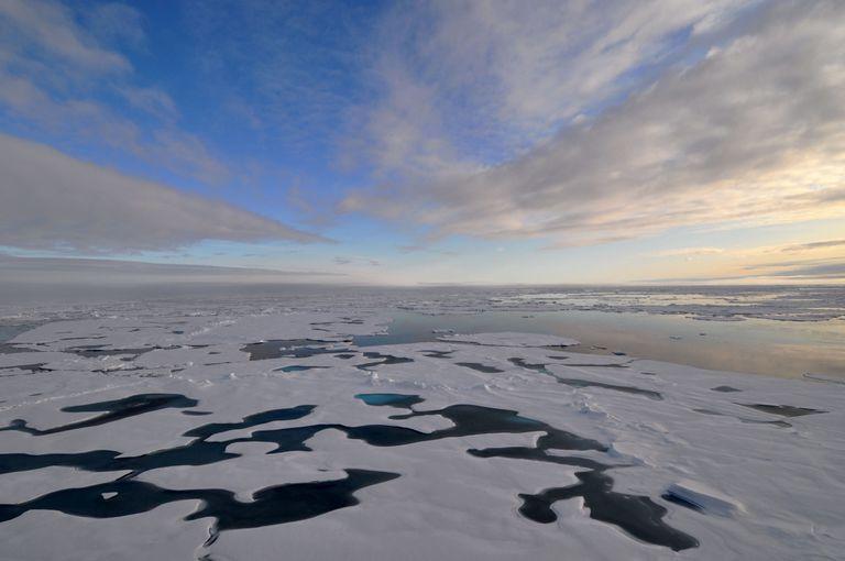 7 razones por las que es importante el hielo marino del Ártico