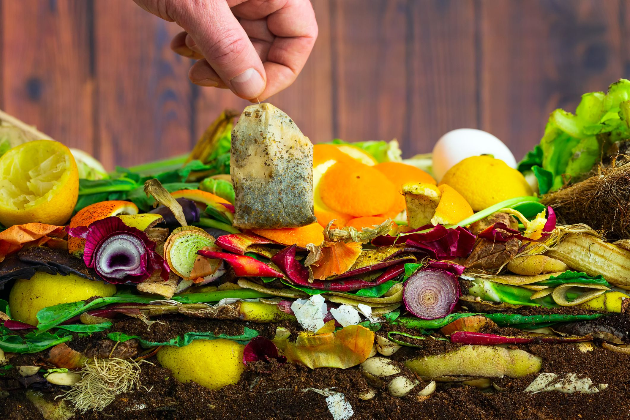 How to Compost at Home: Basic Steps and Types of Composting