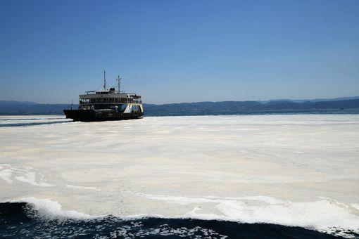 Turkish sea snot