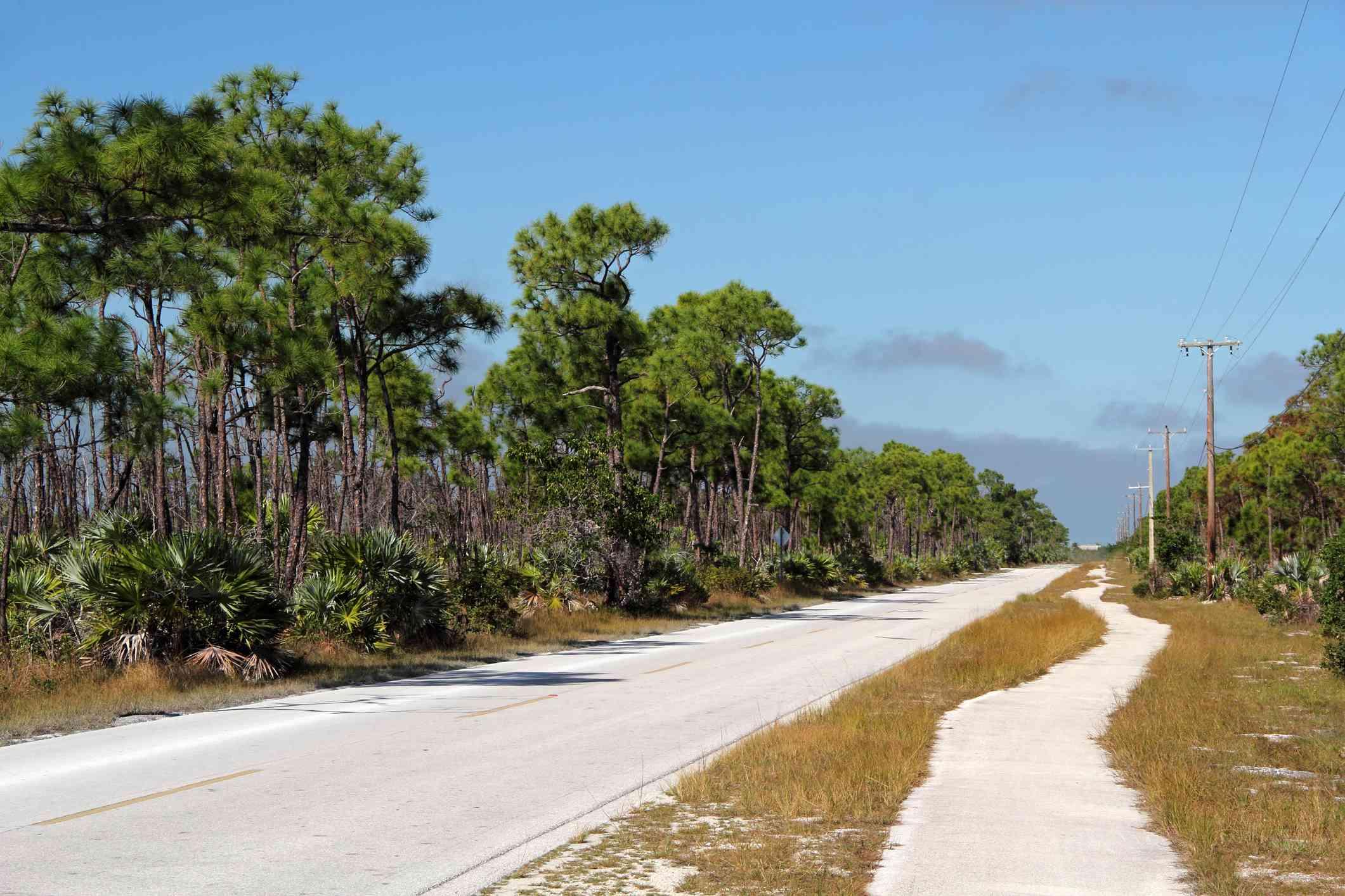 Road and walking path running through Key Deer Wildlife Refuge