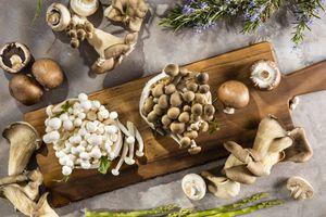 Different types of mushrooms