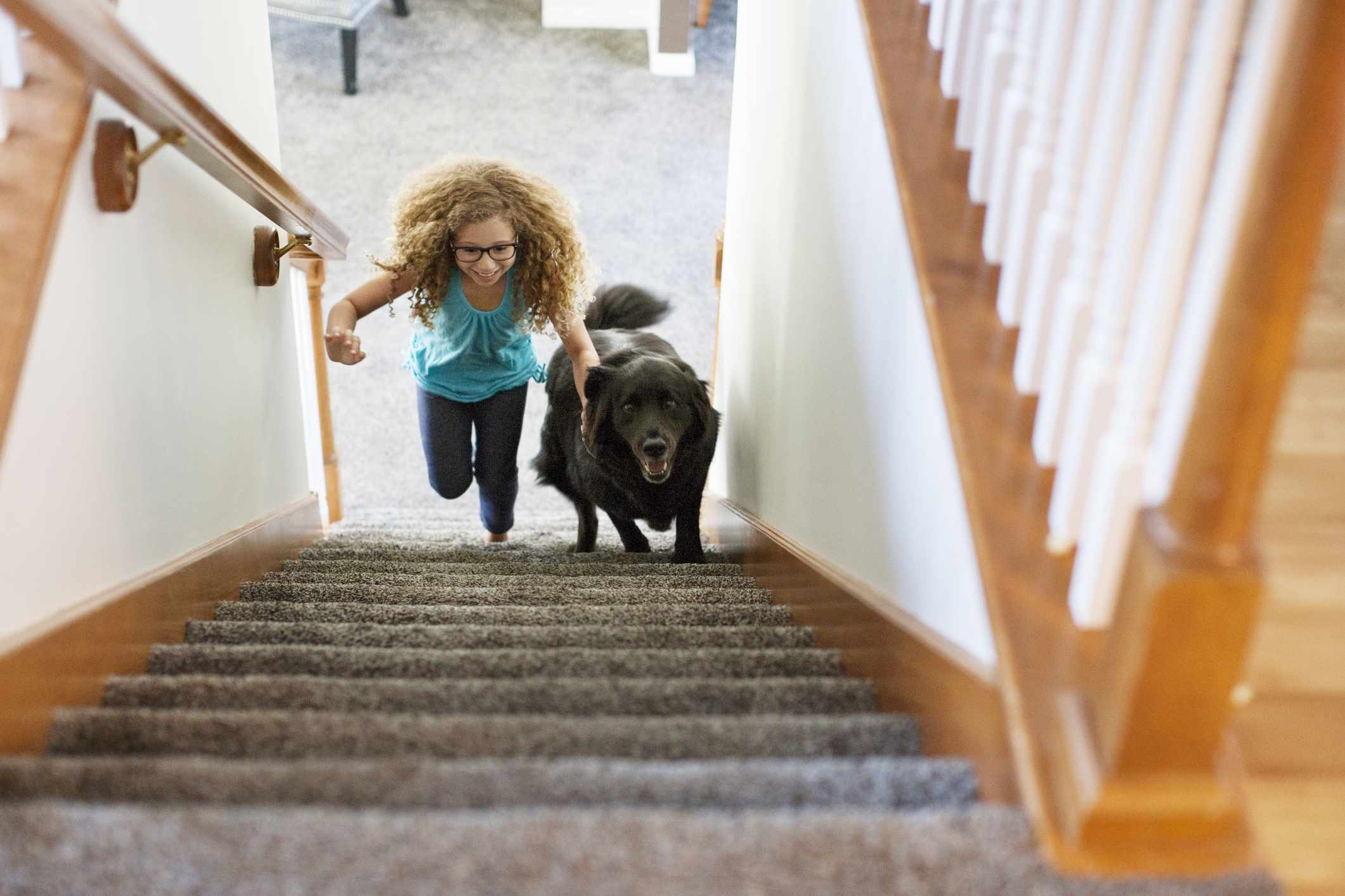 High angle view of girl and dog running up stairs