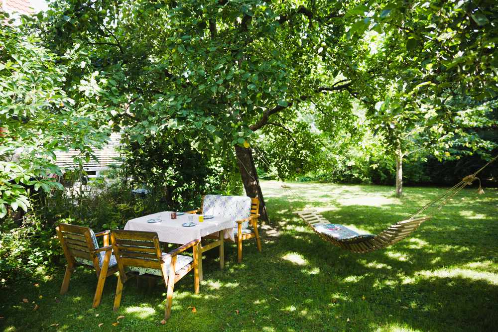 shady backyard with table and chairs and a hammock