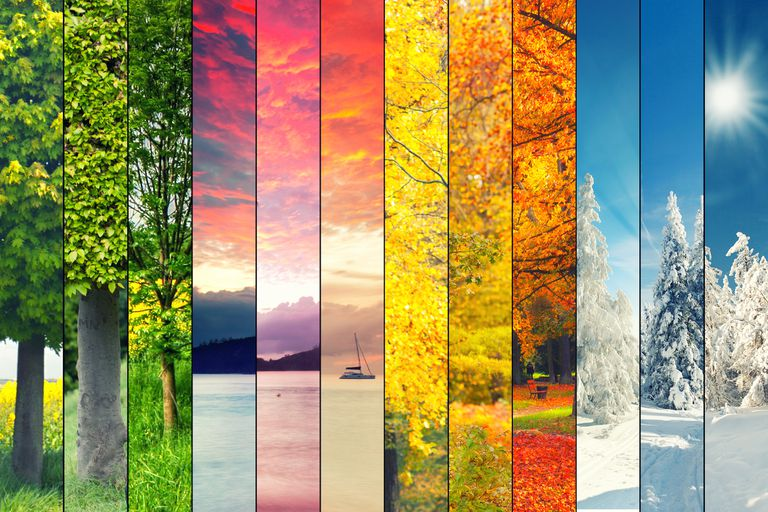 A collage of the four seasons