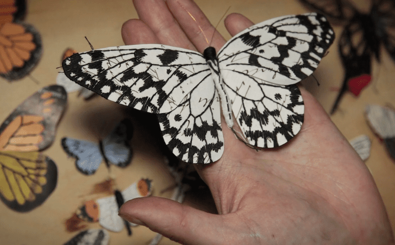 Esculturas hechas a mano en papel reciclado de insectos y hongos documentan una naturaleza curiosa (video)