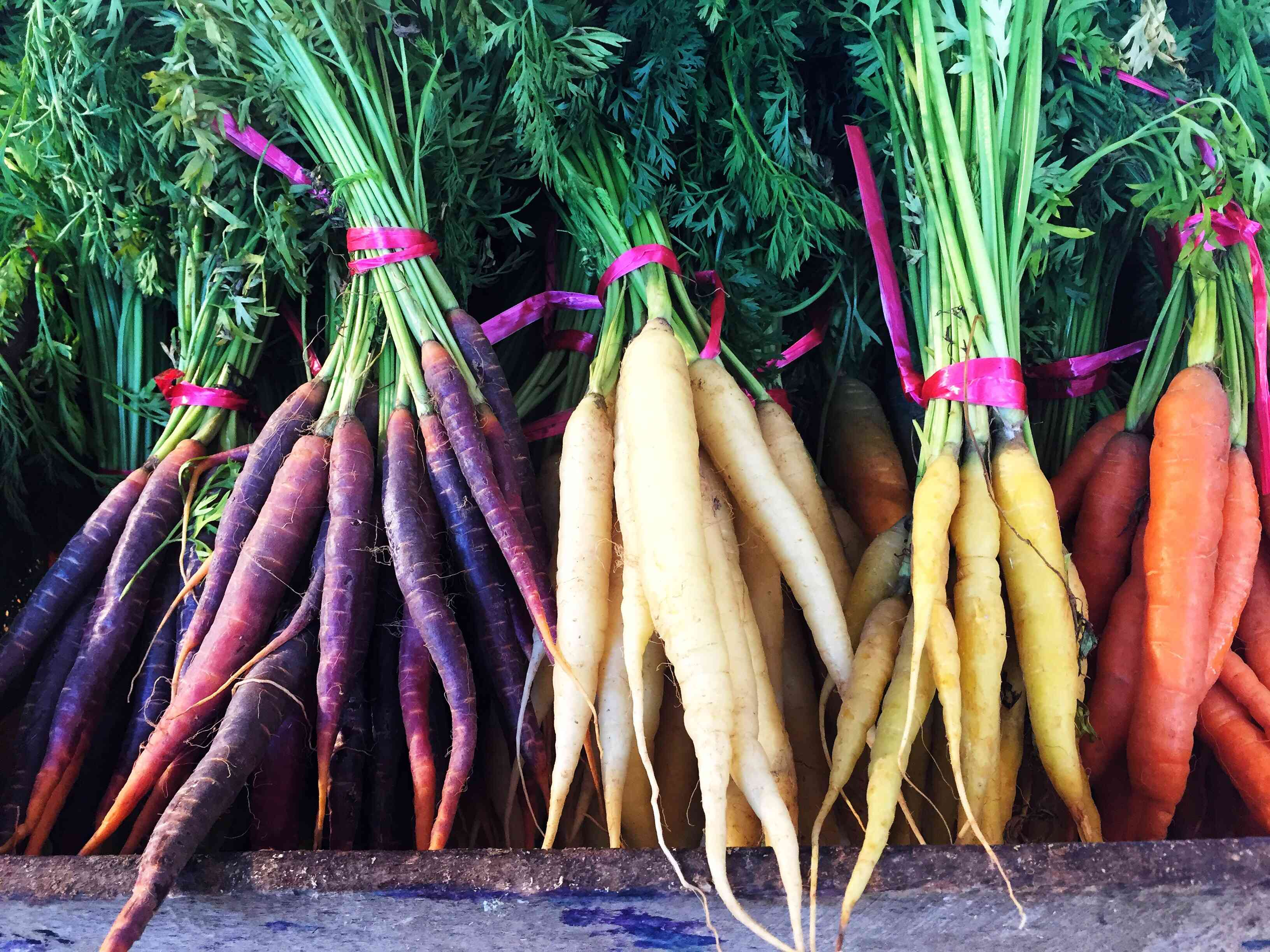 Bunches of purple, white, yellow, and orange carrots