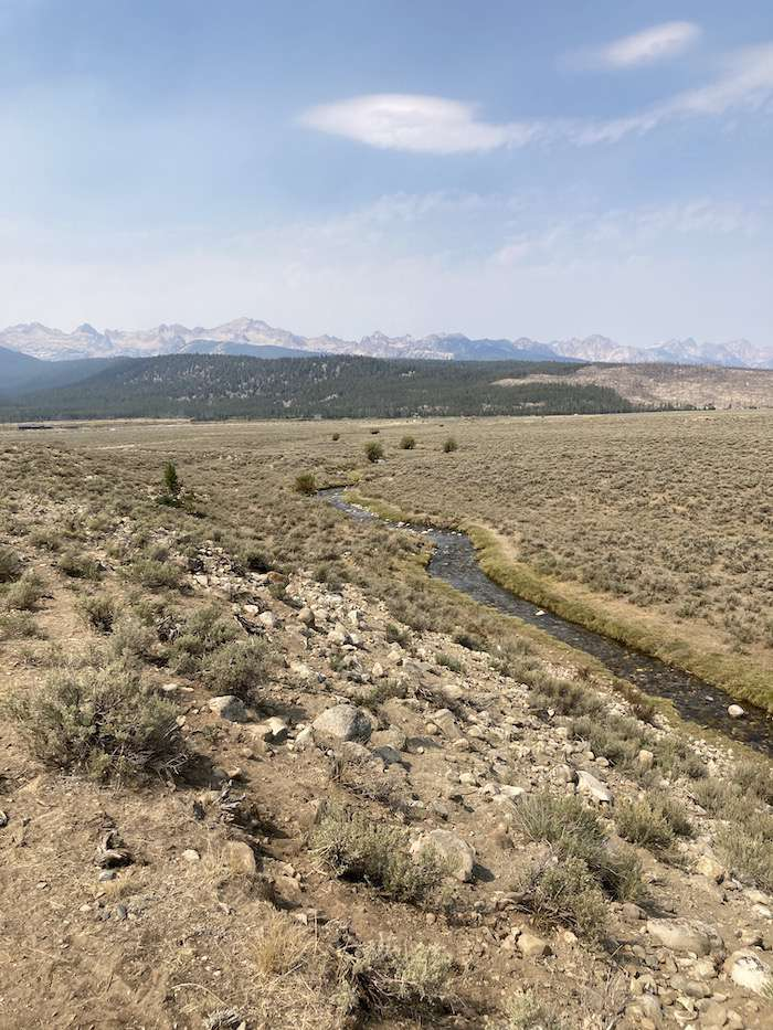 Photo 128 has Champion Creek in the foreground and the Sawtooth Mountains in the background for a landscape scale shot. Notice the near complete absence of willows, the grass bank grazed down to nothing, and the prominent sheep trail that parallels the stream.