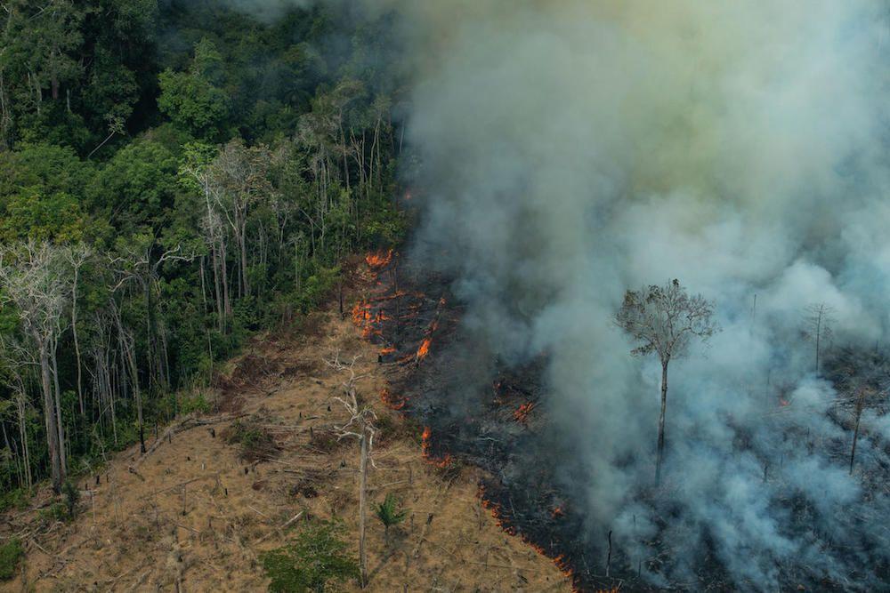 Amazon fires 2