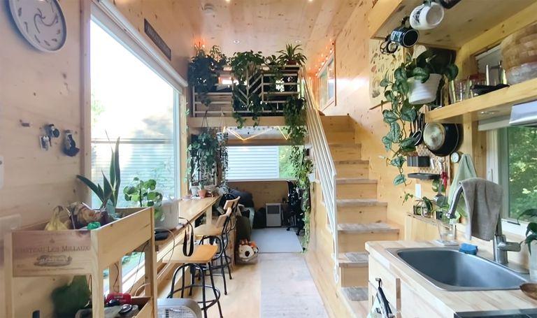 tiny house with houseplants interior