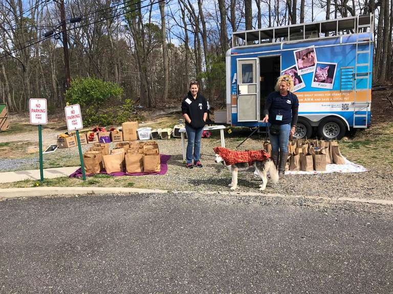 Volunteers staff the Animal Welfare Association's drive-up mobile pet pantry in New Jersey.