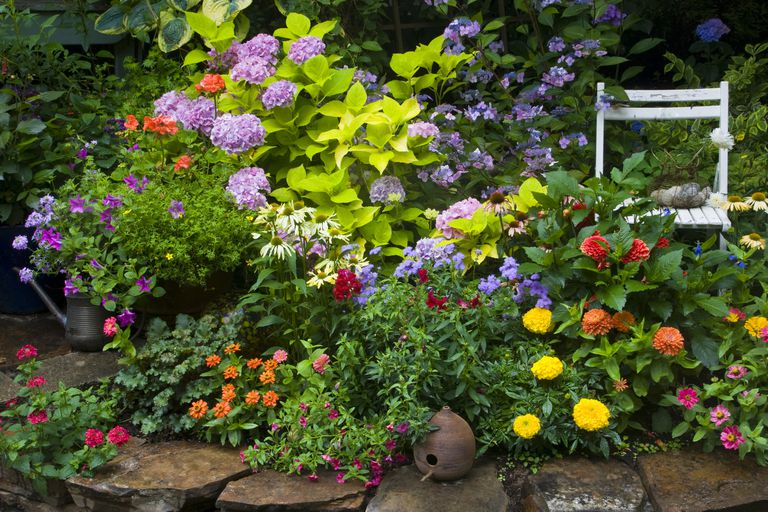 Perenial flower bed