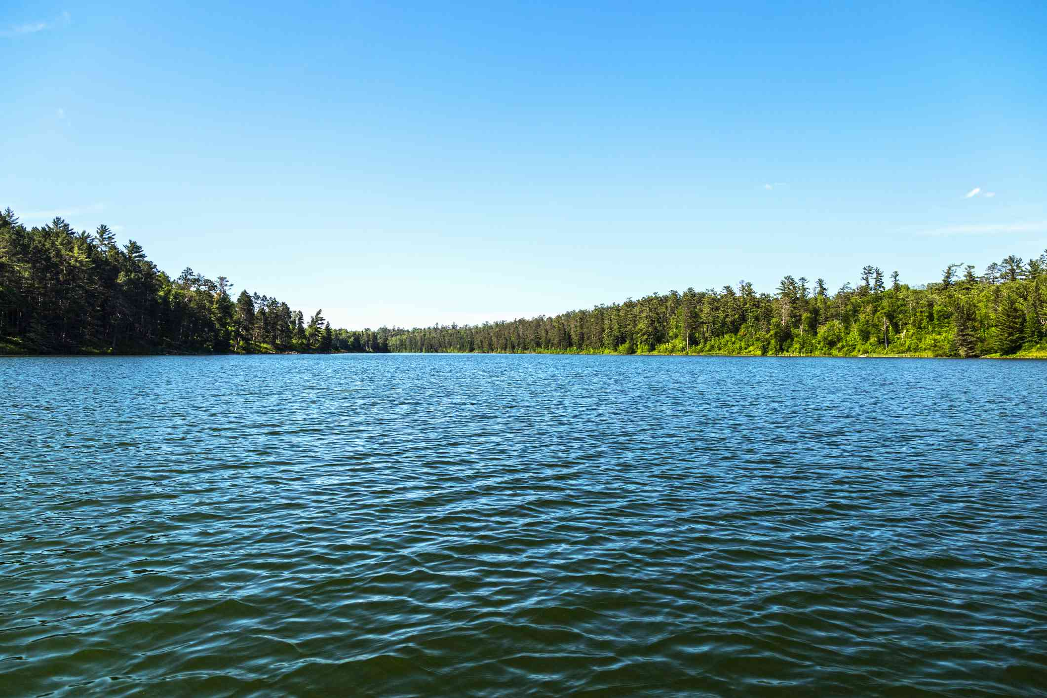 Lake Itasca, with green trees in the distance