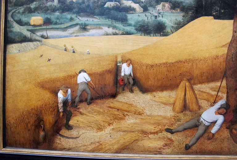 Photograph of the painting The Harvesters by Pieter Brueghel the Elder
