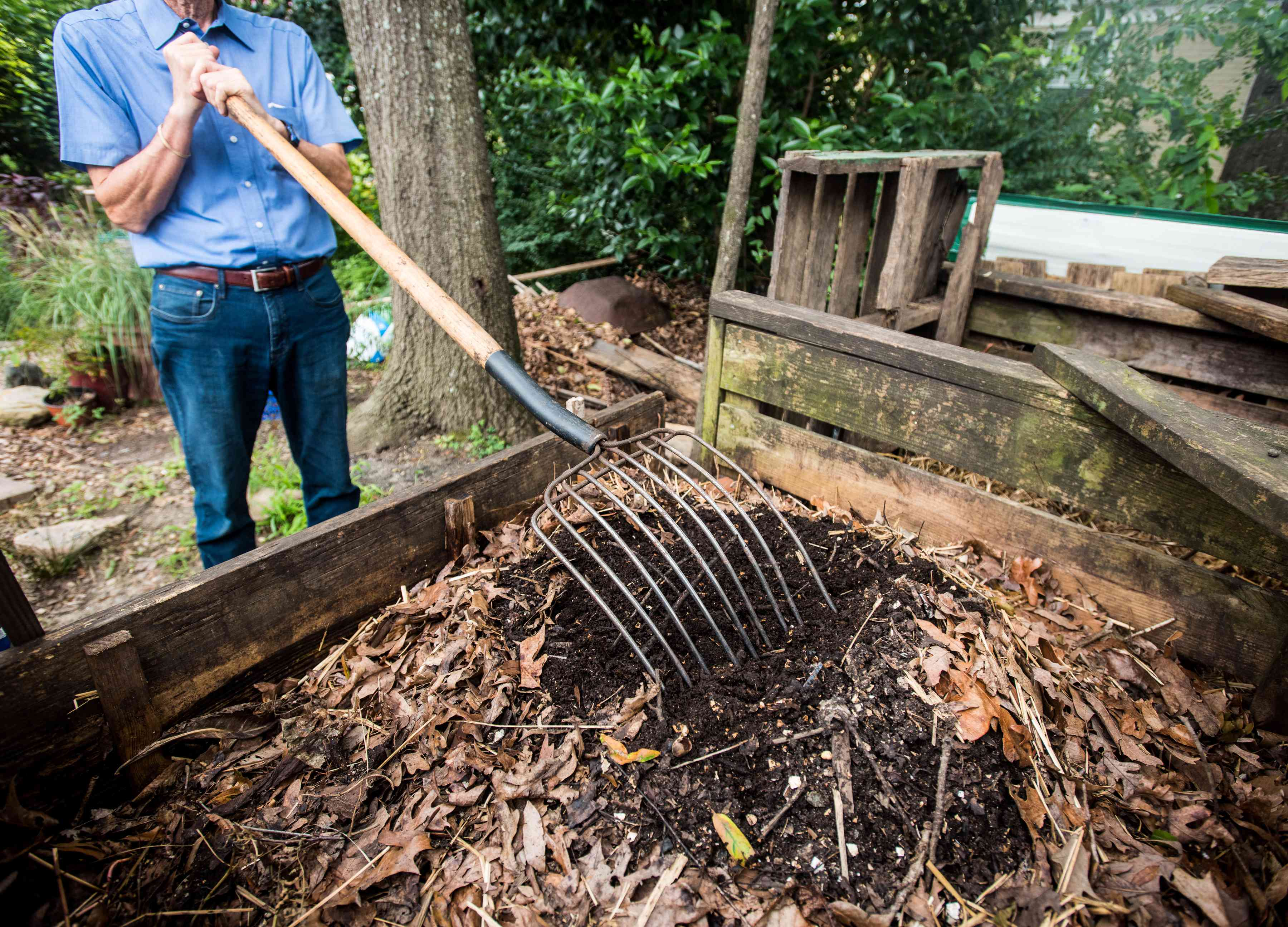 man in jeans holds rake over compost bin