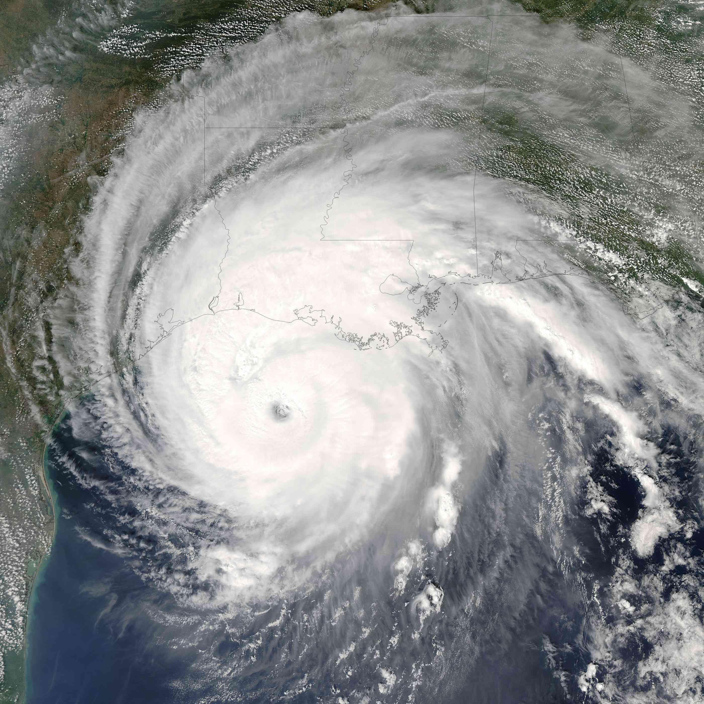 hurricane, golden spiral, fibonacci