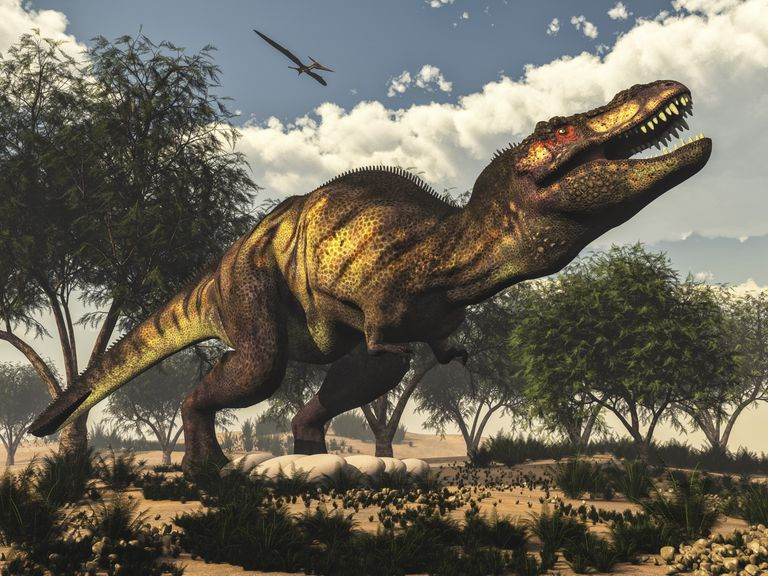 Illustration of large toothed dinosaur in a area with a mix of trees and grasses, possibly a tyrannosaurus rex standing over nest of eggs and seeming to possibly defend the nest from a flying
