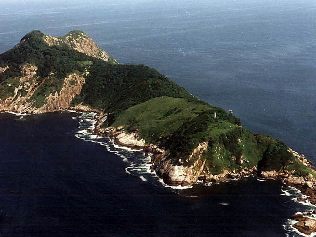 An aerial view of the tree-covered Snake Island in Brazil