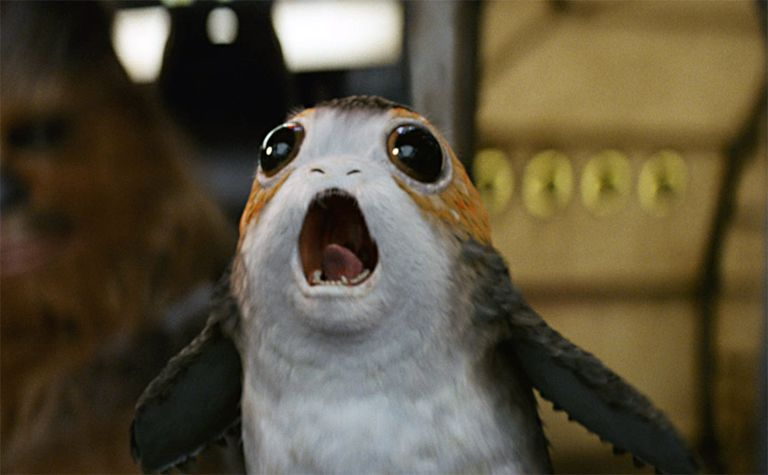 The adorable porgs from 'The Last Jedi' were actually created to solve a problem caused by a species here on Earth.