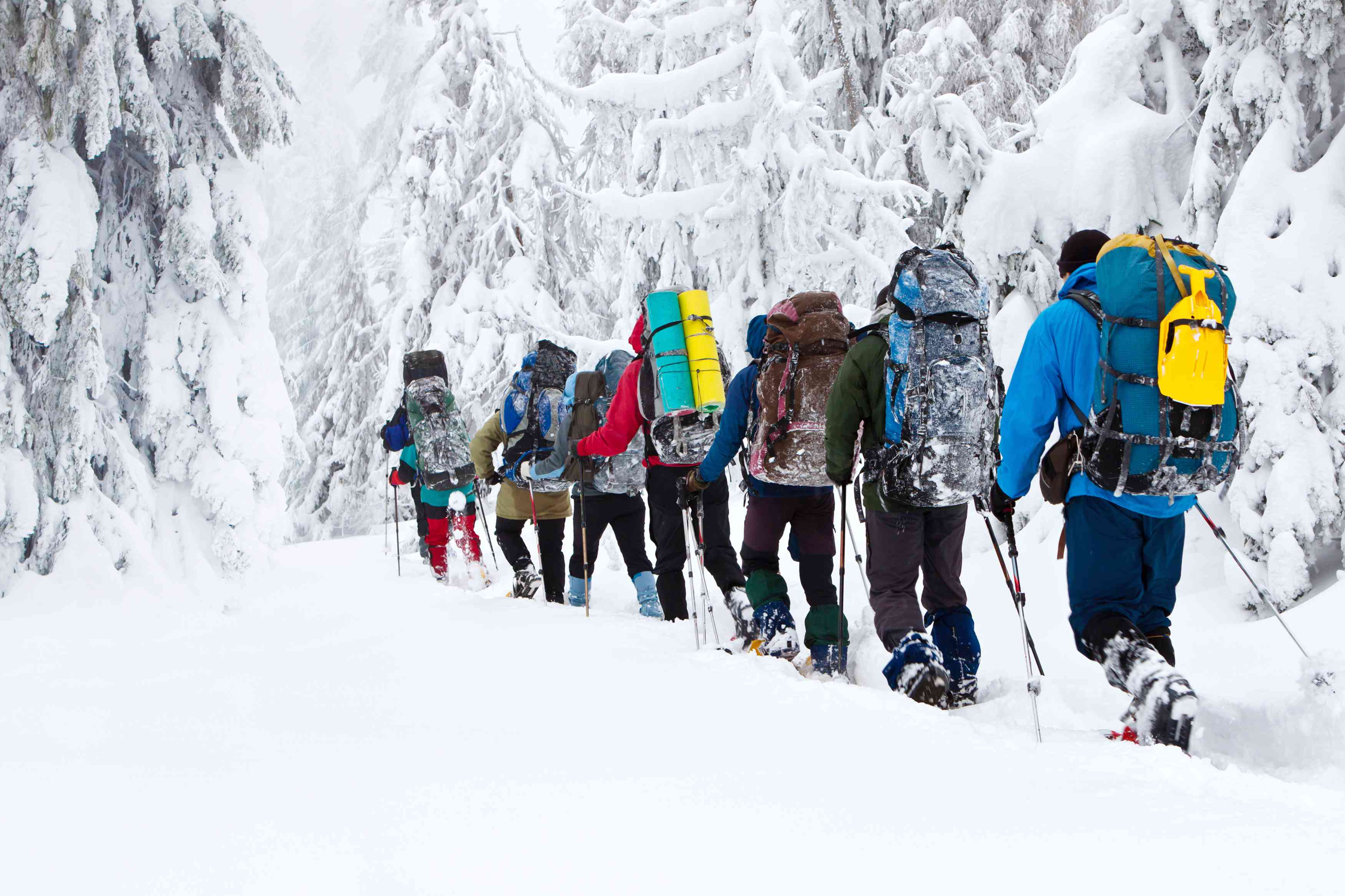 group of backpackers hiking through snow in winter