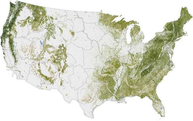 nasa earth observatory united states usa trees