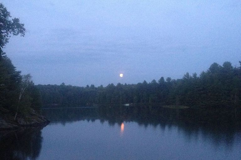 Moon rising over woods and a lake