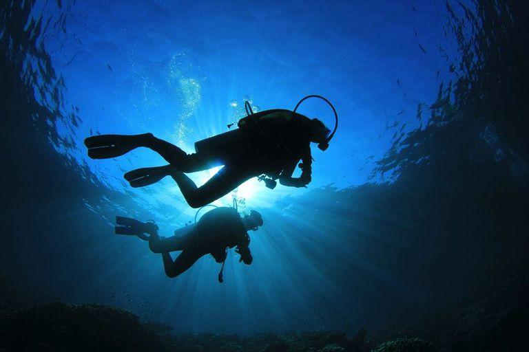 ¿Puede el buceo ser ecológico?