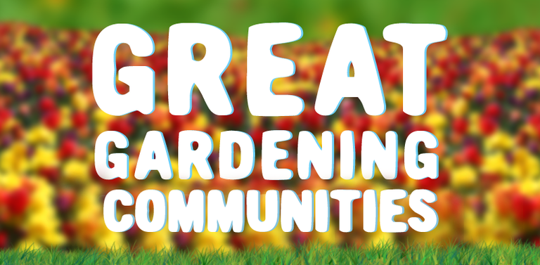 Great online gardening communities