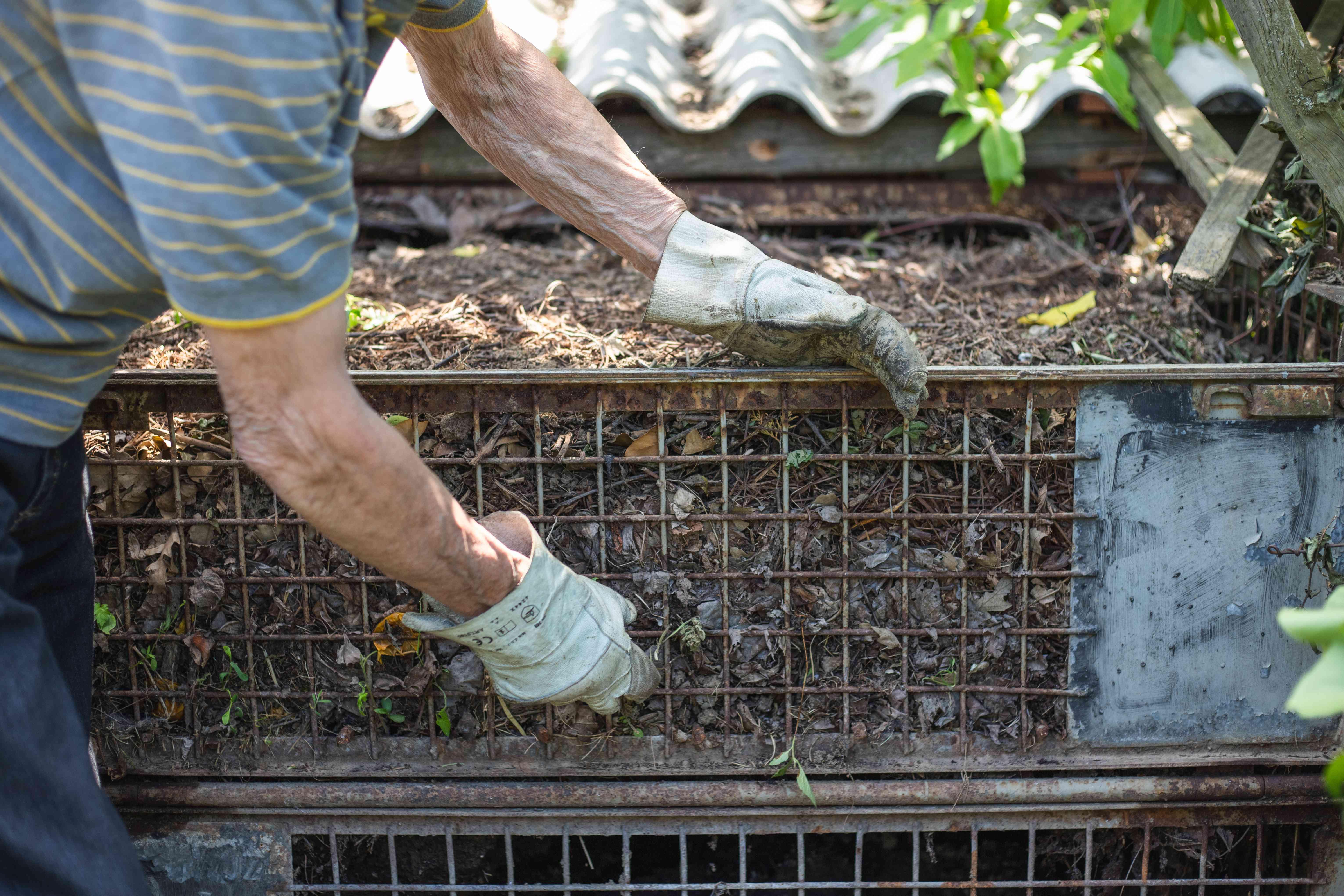 older person with garden gloves adjusts outdoor metal compost bin