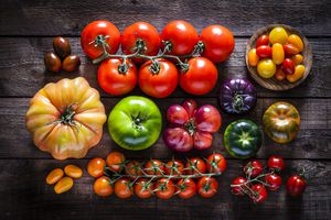 Collection of tomato varieties on rustic wooden table