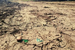 Dried river bed during a drought
