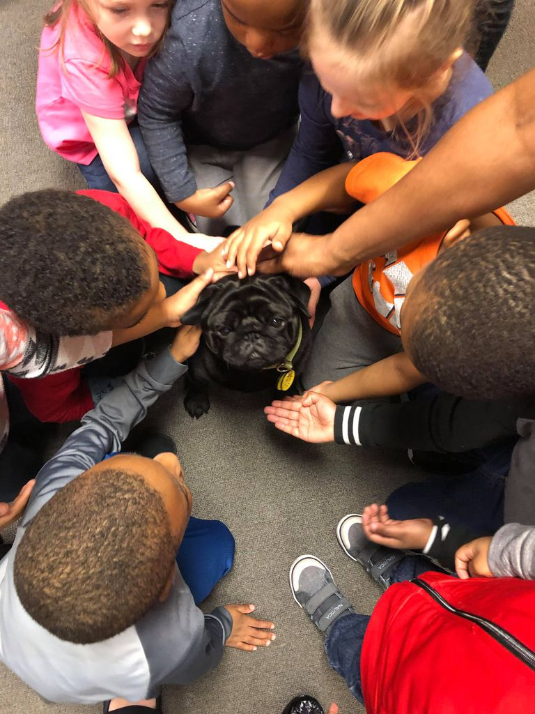 Dog surrounded by children