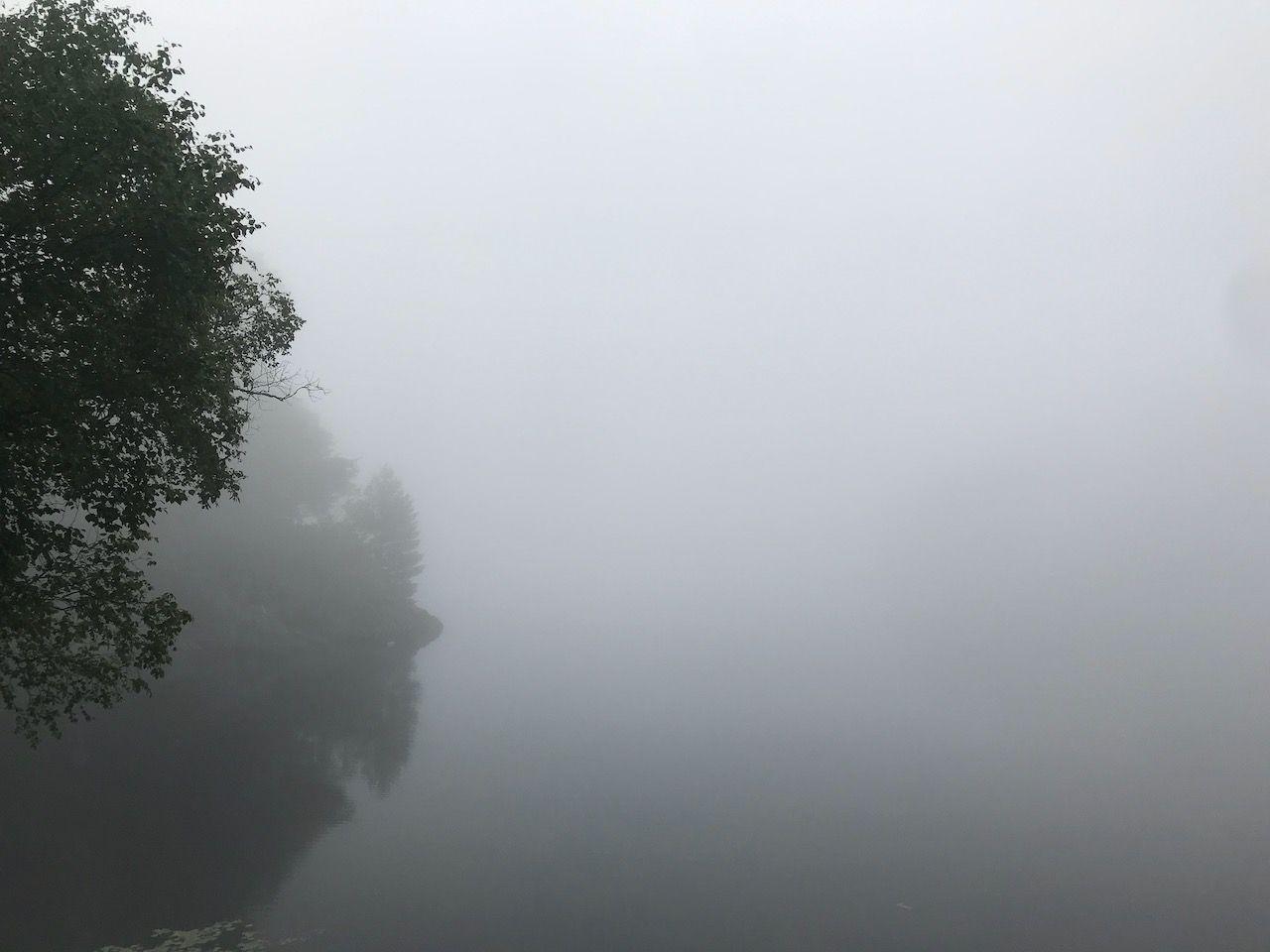 Morning Mist in Muskoka