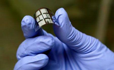 leaf solar cell
