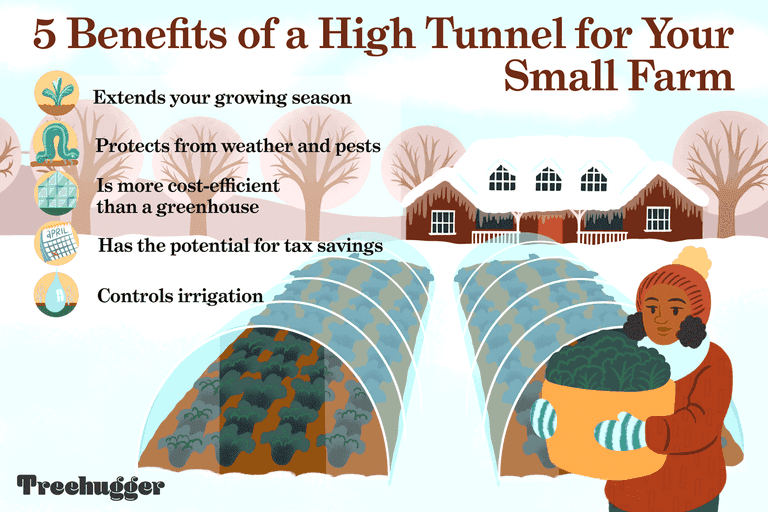 benefits of a high tunnel for small farm illustration
