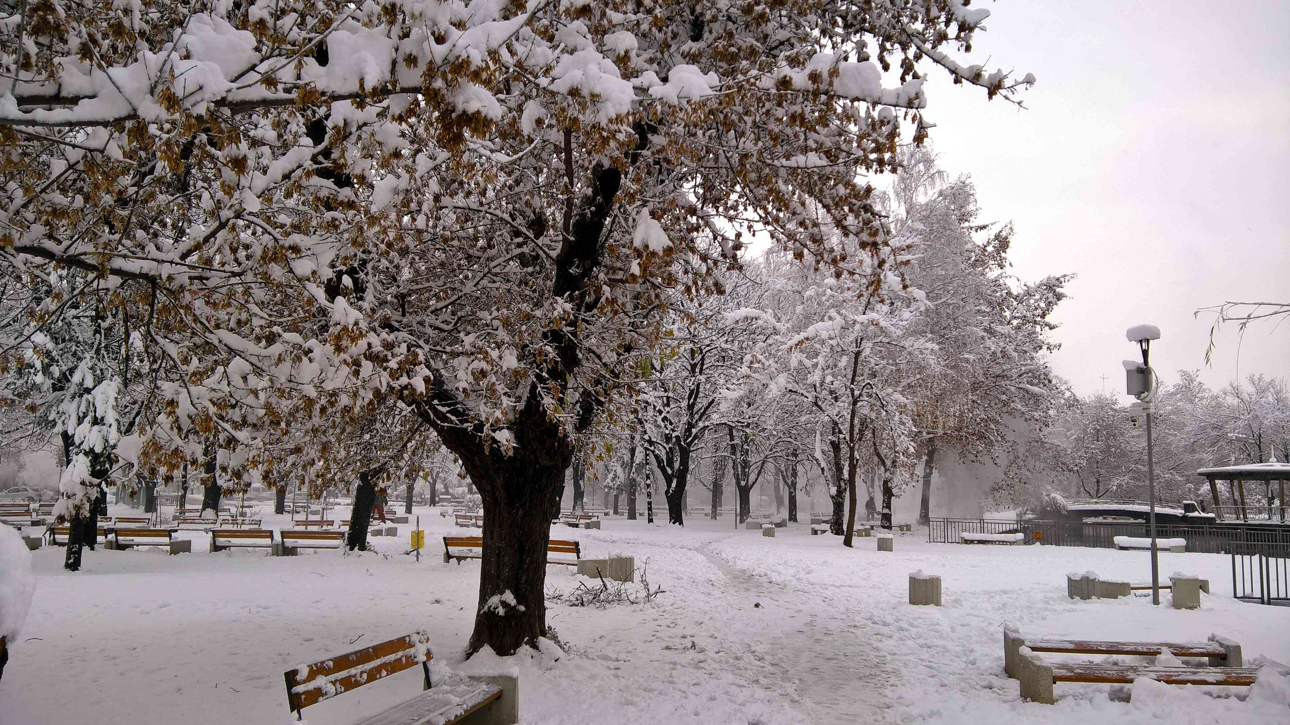 A winter scene is a park.