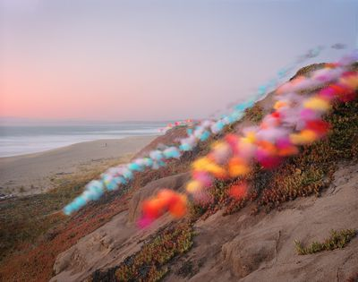 Tulle photographic series by Thomas Jackson