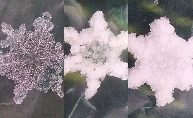 The progression of a snow crystal to graupel
