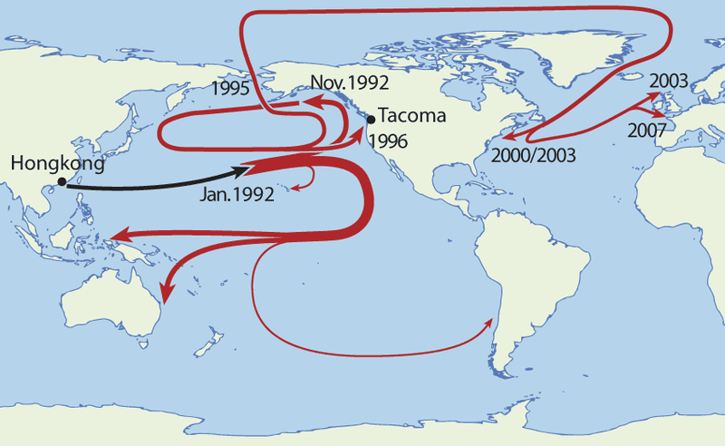 Travel patterns of rubber duckies