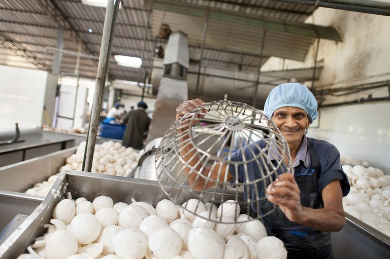Documental corto explora la búsqueda del Dr. Bronner por el comercio justo, aceite de coco orgánico